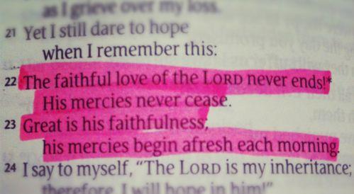 afresh each morning.: God Peace, Lamentations 3 22 23, Scriptures Faith, God Words, God Is, Life Ver, God Love, God Truths, Bible Ver