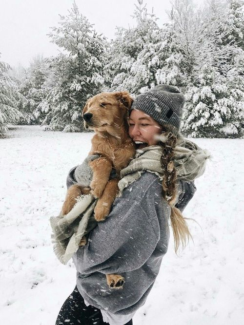 winter, snow, and dog afbeelding
