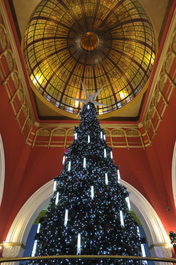 Queen Victoria Building Swarovksi Christmas Tree. If you're lucky enough to visit this iconic building you may even see snow falling from the ancient stained glass ceiling