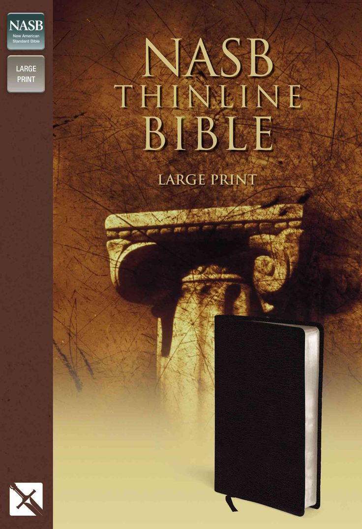 New American Standard Bible Thinline: Bounded Leather,