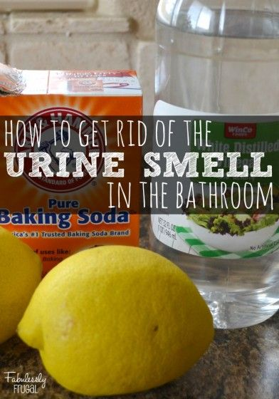 How to get rid of that yucky urine smell in the bathroom! This is SIMPLE to do, and VERY effective!