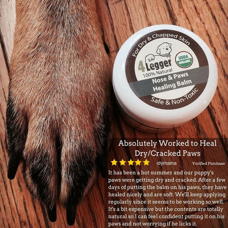 4-Legger Certified Organic Healing Balm for Dog Nose and Paw Pads