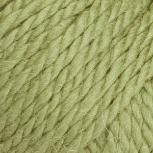 Andes 7320 pistachio. See all colours in Andes here: http://www.lanade.de/?art=1662