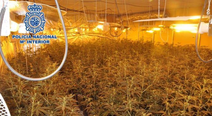 Dos personas han sido detenidas por defraudar el suministro eléctrico y tráficar con estupefacientes.      Agentes de la Policía Nacional han desmantelado en Vélez-Málaga dos laboratorios para el cultivo y elaboración de marihuana instalados en una nave de la de la citada localidad,   #marihuana #plantas #velez-malaga