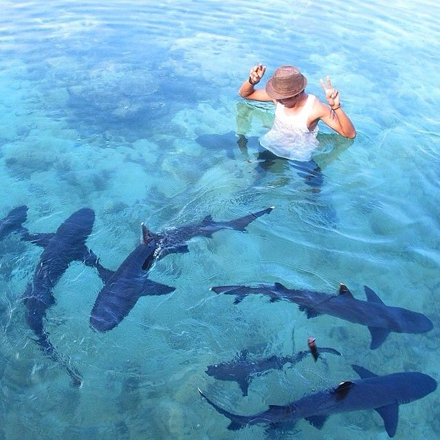 22 Places In Indonesia You'll Find White Sand Beaches With Crystal Clear Water. Karimun Jawa, Jepara, Central Java