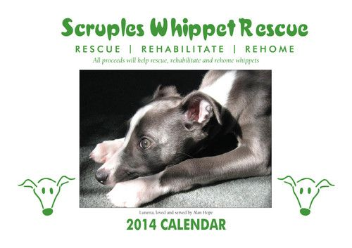 must get one ... Scruples Whippet Rescue