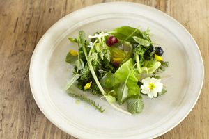 Vegetarian dish from Oliver Stephens at Priory Bay Hotel