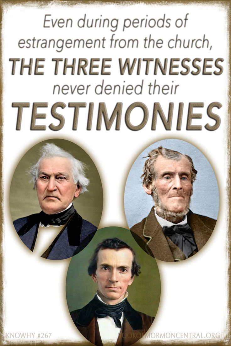 Image result for book of mormon witnesses
