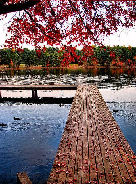 Raleigh, North Carolina - Top 10 Cities. Moving to Raleigh, NC? Call Lauren Murosky, REALTOR. 919.874.7544