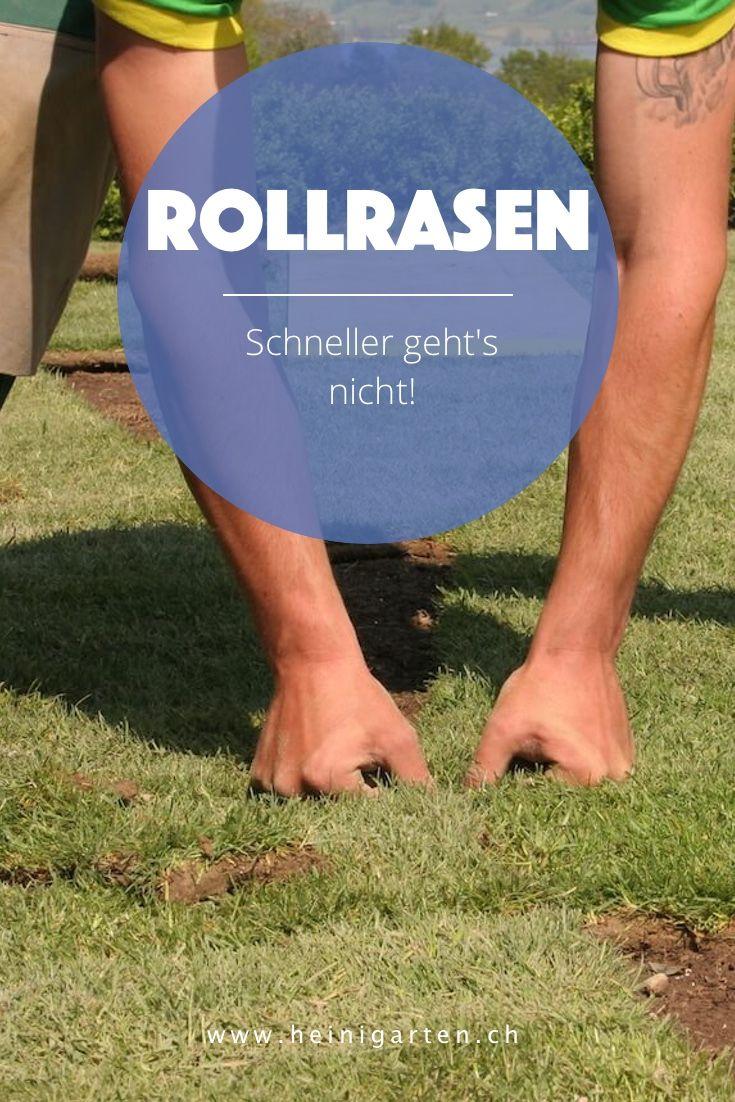 Rollrasen verlegen in Luzern.