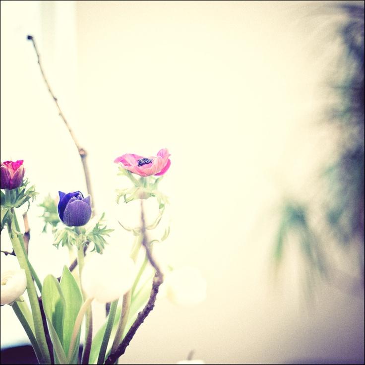 Frühlingsstrauss