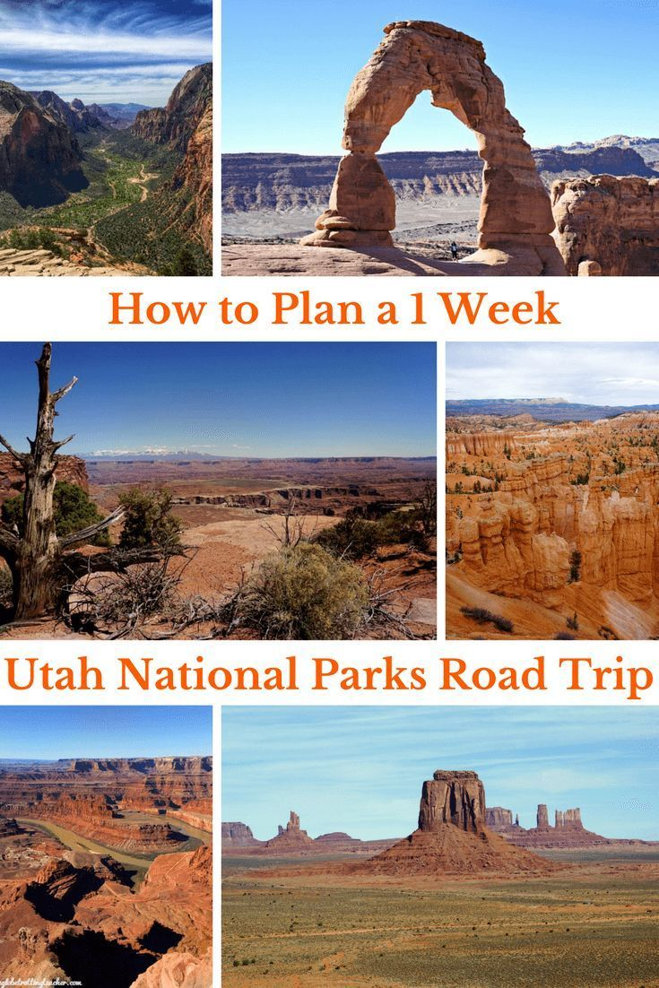 travel national park road trip tips