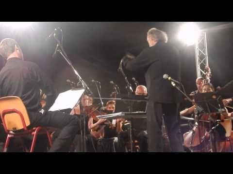 CodognèVilla Toderini Concerto della Filarmonia Veneta 2015