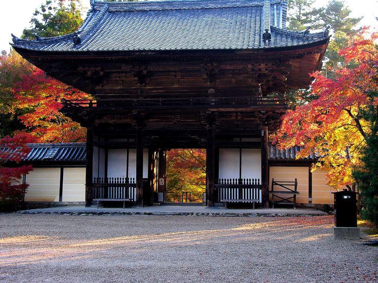 京都  神護寺。三門。上品で堂々としている。