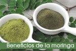 Los 8 Increíbles Beneficios De La Moringa Oleifera Para La Salud