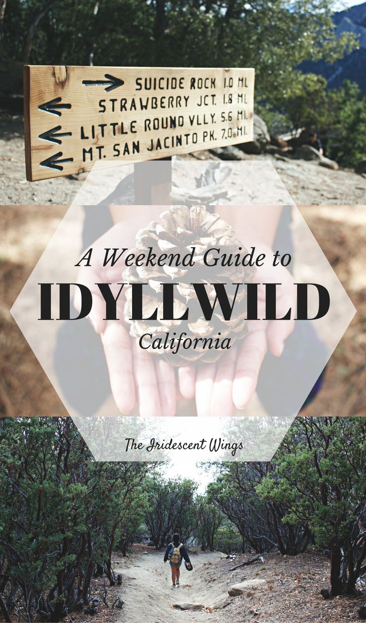 Travel California Ca | Idyllwild | Hiking | Weekend Getaway | Nature | Things to do | Places to eat | Where to Stay | Itinerary Read: https://www.theiridescentwings.com/single-post/2016/11/15/Suicide-Rock-Mountain-Casita-Idyllwild-Calfornia