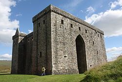 Hermitage Castle 06.jpg The Earl's sons provided the seed of the two famous branches of the house – the 'Black' (for Earls of Douglas) and 'Red' (for the Earls of Angus). By 1455 the Black line had so incensed the King that James Douglas, 9th Earl of Douglas was forfeited, never to return, and the beneficences that they had enjoyed passed to the 'Red' line of Angus, including Hermitage Castle.