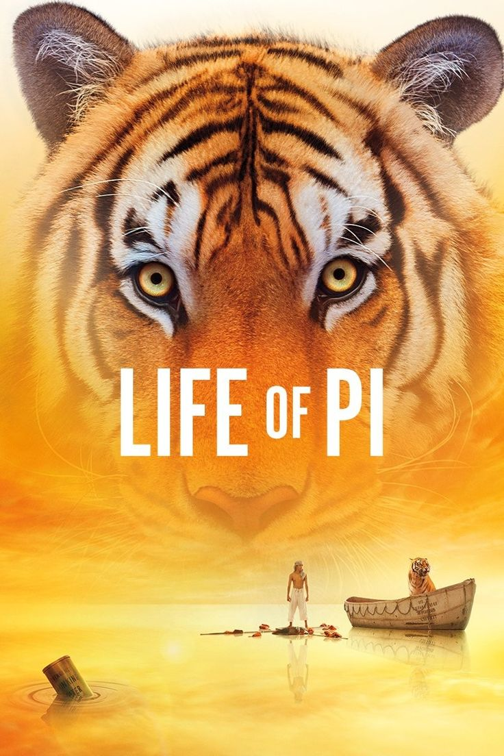 Life of Pi (2012) - Rotten Tomatoes