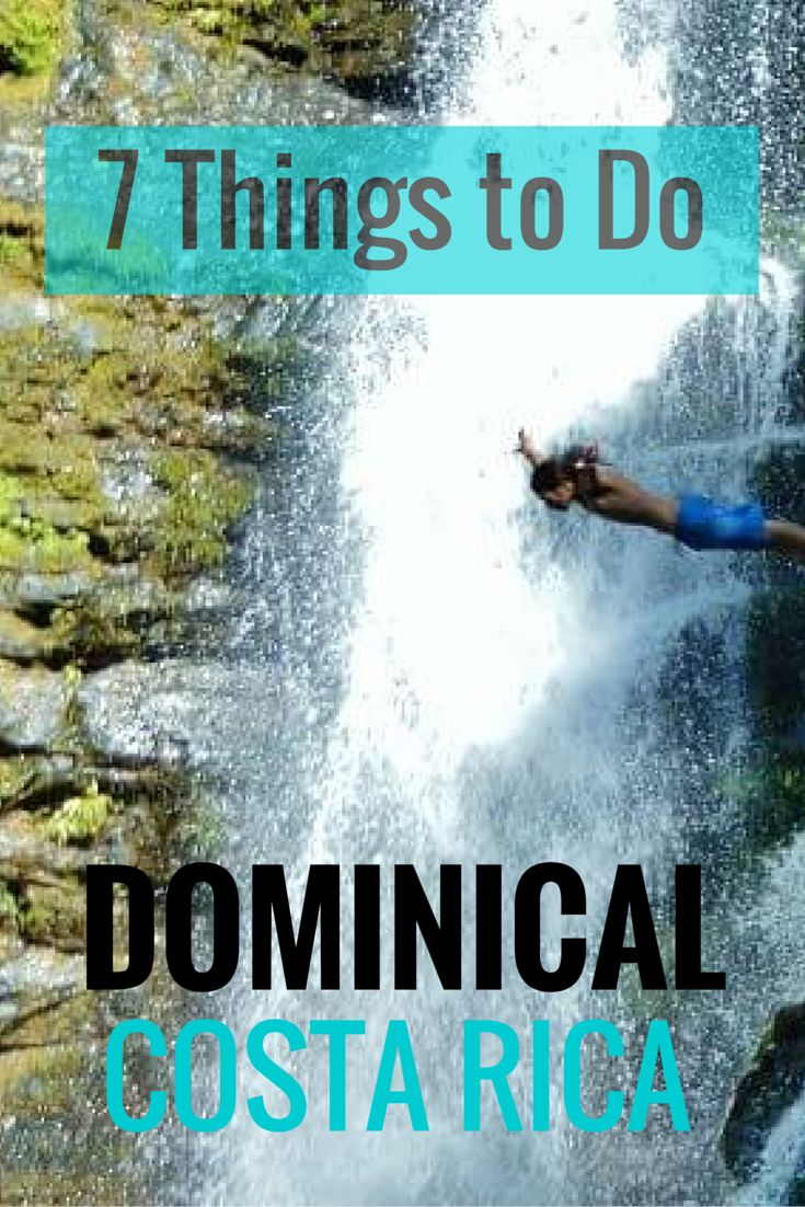 Incredible waterfalls, hiking, a kayak/SUP mangrove tour, where to go to see wildlife & more. Our picks for the top 7 things to do near Dominical.