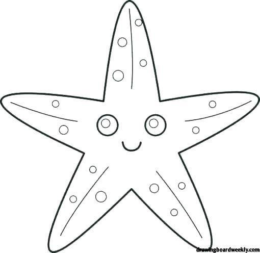 Starfish Coloring Page Star Coloring Pages Starfish Drawing Starfish Printable