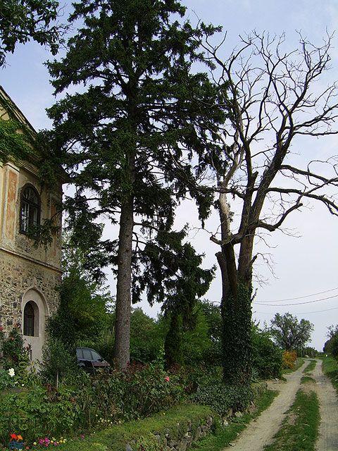 Badacsony, Hungary#Balaton region