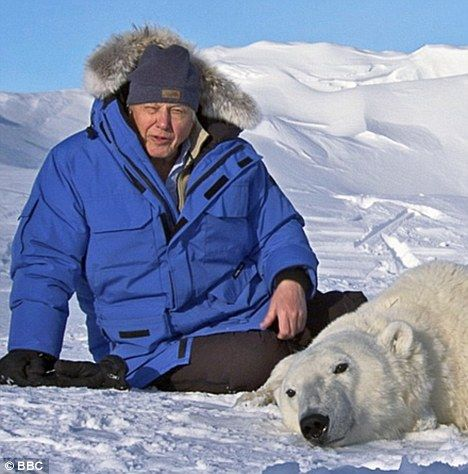 """Sir David Attenborough """" I do not think we are going to become extinct. We're very clever and extemely resourceful- and we will find ways of preserving ourselves, of that I am sure. But whether our lives will be as rich as they are now is another question"""""""