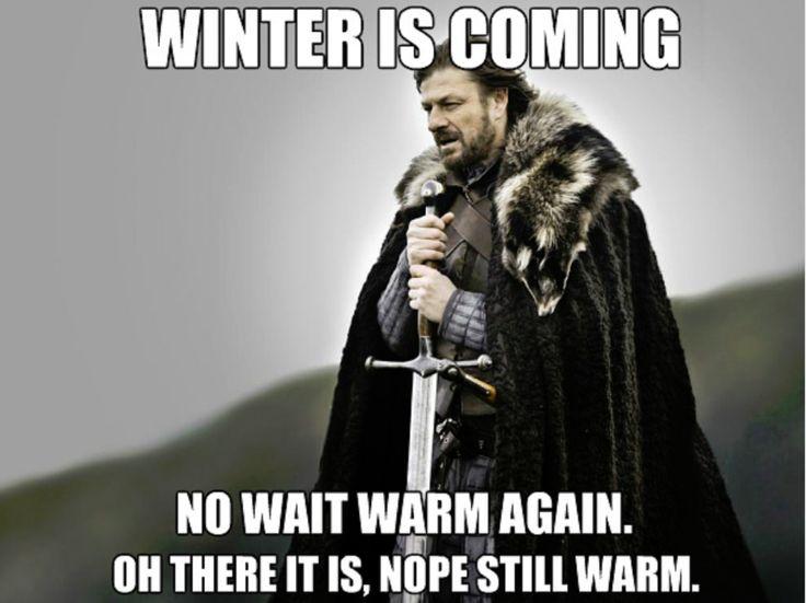 The 25+ best ideas about Winter Is Coming Meme on Pinterest  Ned stark meme,...