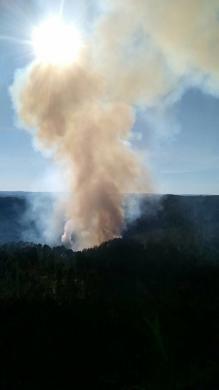 Controlado el incendio provocado por un rayo cerca de las Pinturas rupestres de Villar del Humo - Detalles - Voces de Cuenca