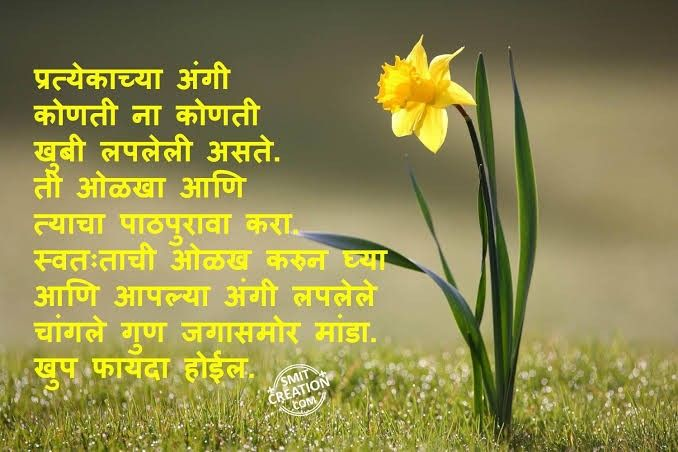 Pin By Govind Tryambak On Life Quote Marathi Quotes Life Quotes Herbs