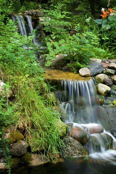 40 best images about cascading waterfalls on pinterest for Design of maturation pond