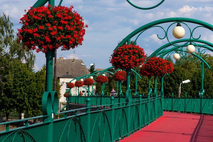 terra flower power - kwidzyn