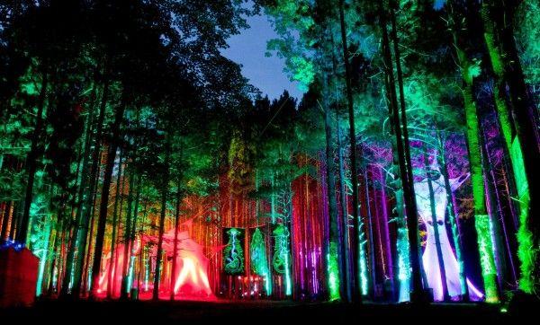 Bosque eléctrico Music Festival en Rothbury, Michigan.