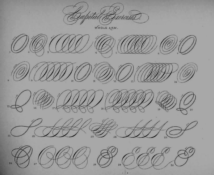 Lyman P. Spencer - Beautiful Calligraphic Examples on This Page!  ♥A