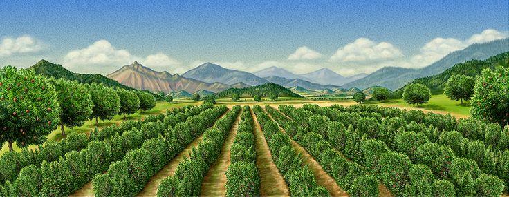 Delro иллюстрации Роско   пища иллюстрации фруктов, овощей, декорации, конфеты, продукты для дизайна этикетки и упаковки продукты питания и напитки   фруктовые изыски сад сцена