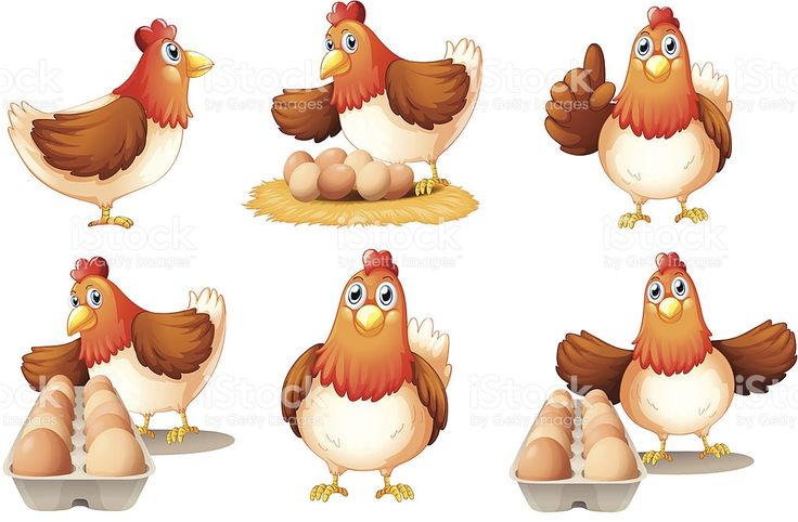 18 best Chicken Clip Art images on Pinterest | Vektorillustrationen ...