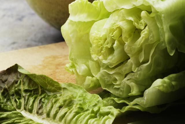 The Nutritional Values for Iceberg and Romaine Lettuce - so Romaine wins, but Iceberg isn't totally useless.