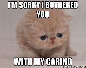 I'm sorry i bothered you with my caring - Super Sad Cat | Meme ...