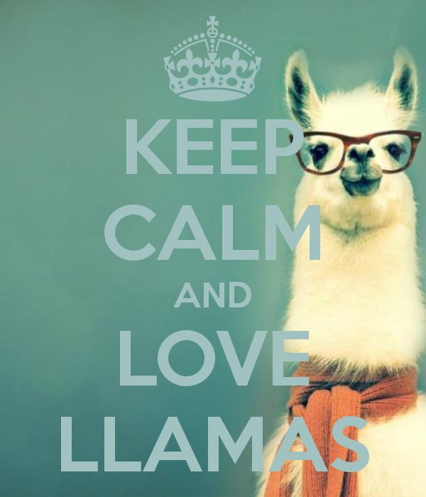 KEEP CALM AND LOVE LLAMAS
