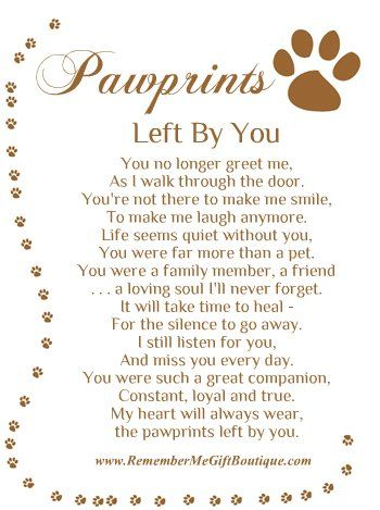 Pet Loss Prayer   So sorry for your loss of your Fur-Baby