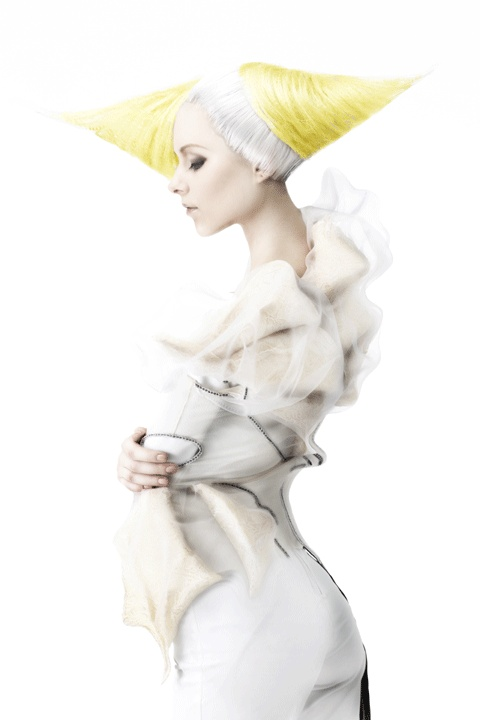 What do you think? I am amazed at the creativity that these hairdressing artists have.