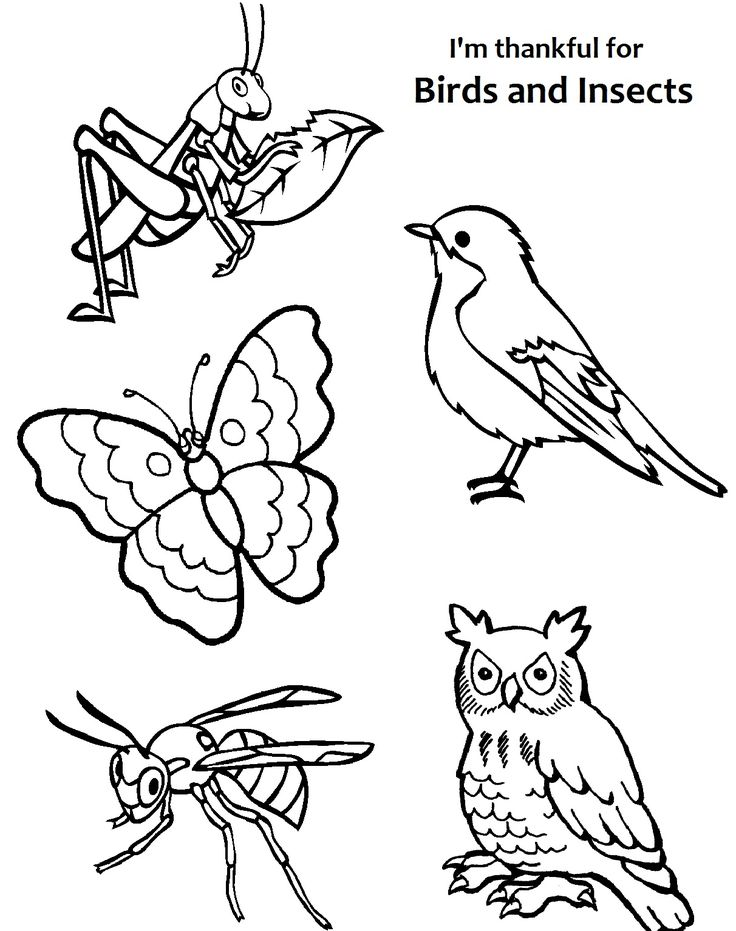 sunbeam coloring pages - photo#22