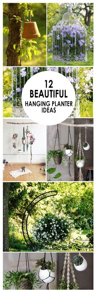 12 beautiful hanging planter ideas