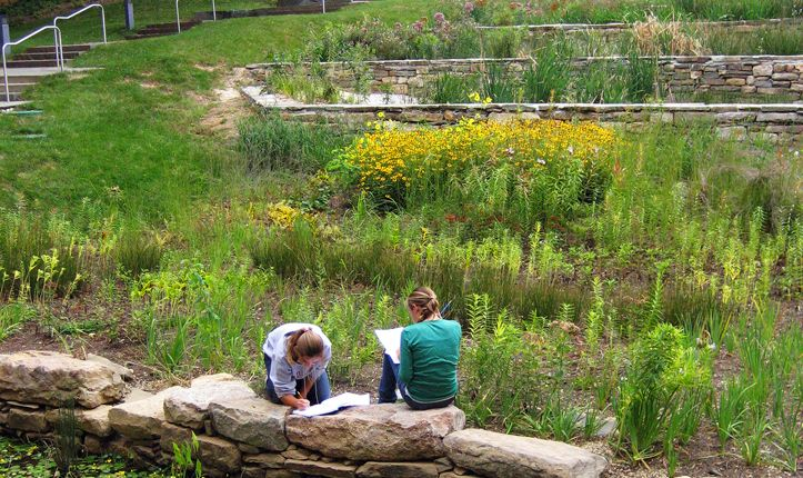 An enlarged middle school building now includes an outdoor living laboratory that features a green roof, terraced wetland, rain garden, and habitat pond.  This space functions as an extension of the classroom where students can learn about sustainable practices.