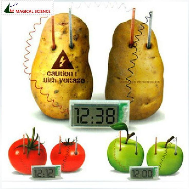 MAGICAL SCIENCE Potato Clock Electrochemical Cell Experiment material ,funny novelty home school green science educational kit