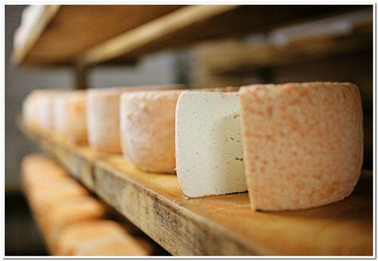 """Sura Kees""    #silvrettamontafon #regional #kulinarisch #montafon #alpe"