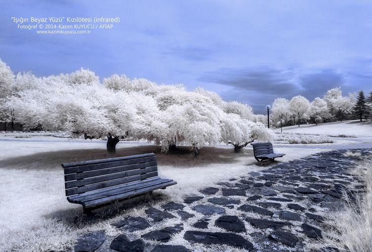 İnfrared bursa botanik park