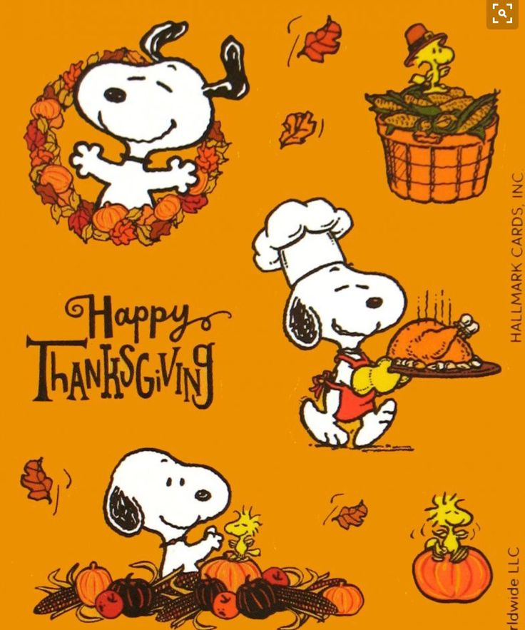 Snoopy is a great chef! • Happy Thanksgiving