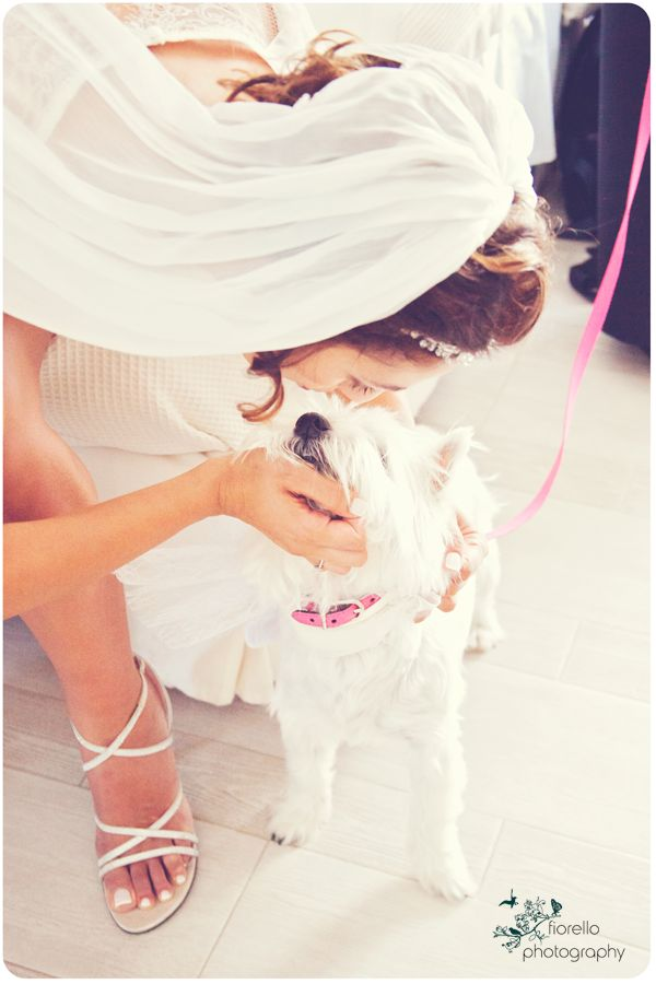 Because a dog IS a bride's best friend! Photo by @Fiorello Photography