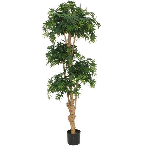 Designplants Acer Bonsai kunstplant. Een Japanse schoonheid dat is deze #kunstplant van #designplants #planten #design #Flinders