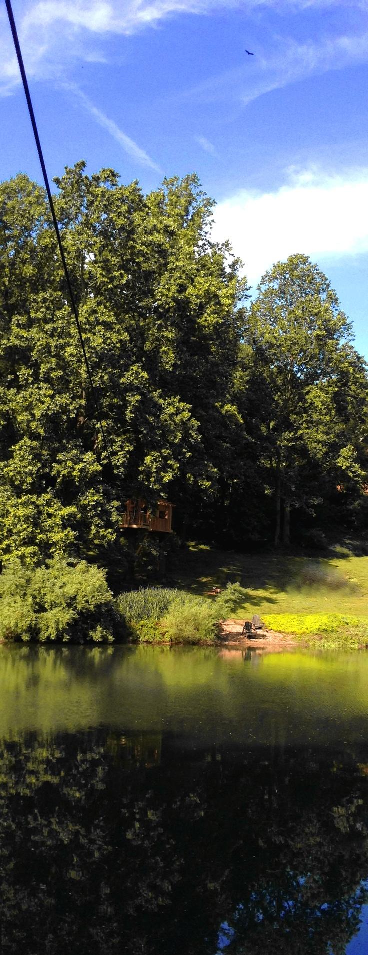 65 best tree houses u0026 ziplines images on pinterest treehouses